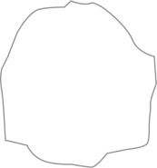 RHINE GRAY