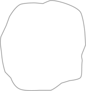 Walnut Traverten