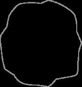 Moca Whıte