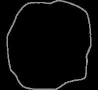 Akasıa